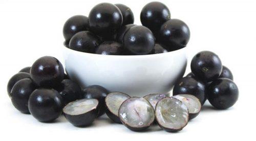 ژابوتیکابا انگور برزیلی