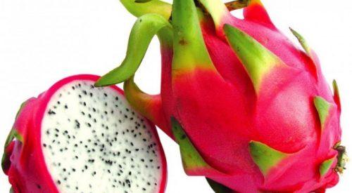 میوه اژدها (دراگون)